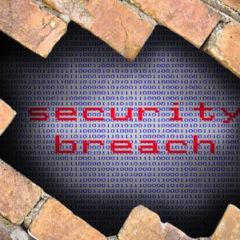 Trust can be Regained with Prompt Data Breach Notices