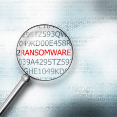 50% of U.S. Companies Have Experienced a Ransomware Attack in the Past 12 Months