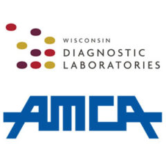 AMCA Data Breach Total Nears 25M as Wisconsin Diagnostic Laboratories Confirms 115K Record Breach