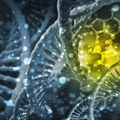 Researchers Describe Possible Synthetic DNA Supply Chain Attack